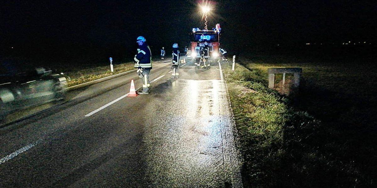 Beitragsbild zu: Verkehrsunfall - Reh vor Auto
